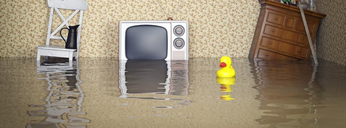 зонты потоп в квартире фото картинки фигурки просто
